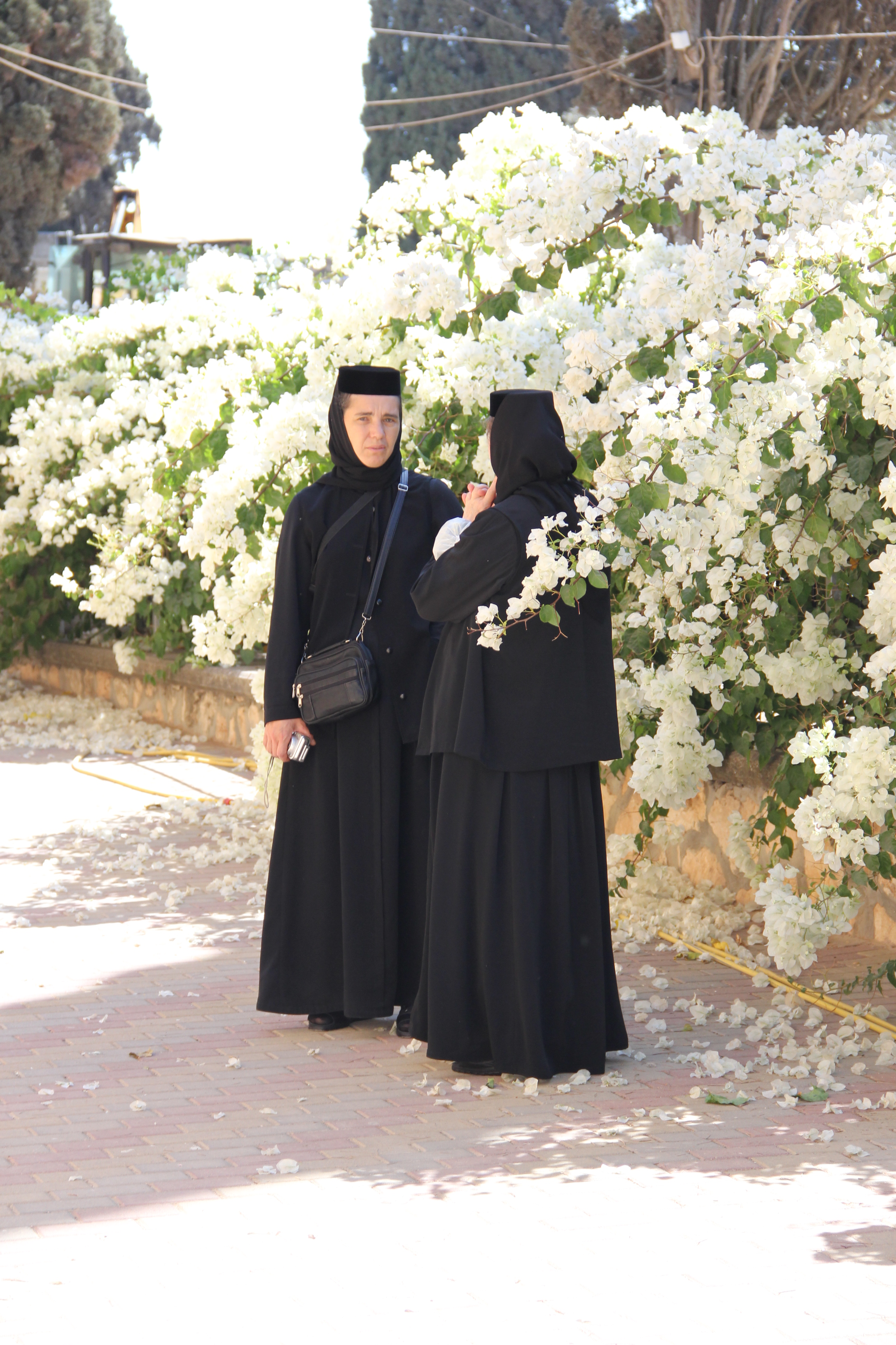 Прат и сестра 24 фотография
